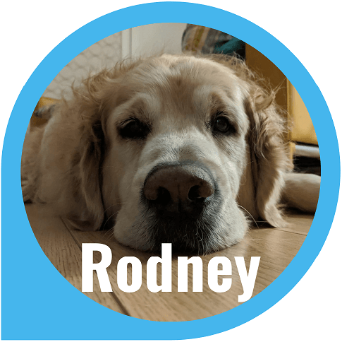 Rodney - Co Founder at Yendor Homes Estate Agent and Lettings